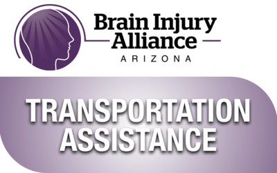 Transportation Assistance Application